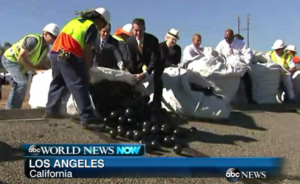 screen_shot_from_abc_news.garcetti_dumping_shade_balls